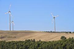 Palette della turbina del vento in campagna. Fotografia Stock
