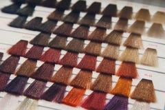 Palette des modèles des cheveux colorés Photos stock