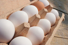 Palette of eggs. On a table stock photo