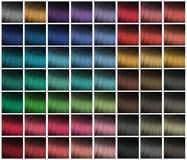 Palette for hair dyeing Stock Image