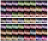 Palette for hair dyeing Stock Images