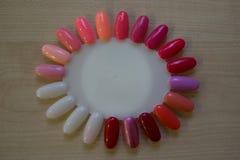 Palette pour des échantillons de vernis à ongles multicolore de gel images stock