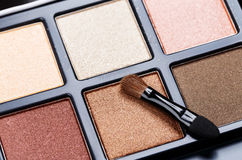 Palette of Professional Colorful Eye Shadows Royalty Free Stock Image