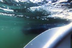 Palette sous-marine, sable vers le haut de vue d'eau du fond d'embarquement de palette image libre de droits
