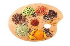Palette of spices Stock Image