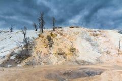 Palette Spring under dark clouds Stock Photo