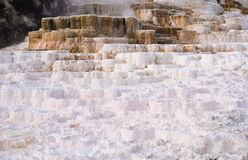 Palette Spring Yellowstone National Park Stock Photo