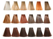 Palette tints for hair dyeing Royalty Free Stock Image