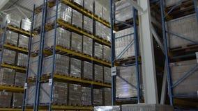 Paletten met bevolen goederen en materialen bij pakhuis De grote terminal van de pakhuislogistiek Schot binnen Logistische Opslag stock video