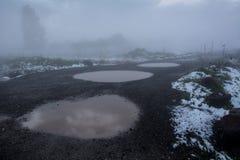 Palettes et neige tôt de ressort Image libre de droits