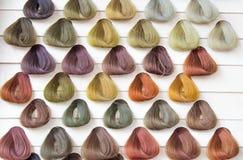 Palettprövkopior av hårfärg. royaltyfri foto