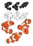Palhaço Fish ilustração stock