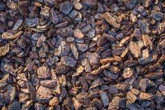 Palha de canteiro da casca de árvore Fotos de Stock Royalty Free