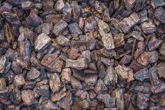 Palha de canteiro da casca de árvore Fotografia de Stock