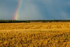 A palha empacota a paisagem Foto de Stock Royalty Free