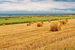 A palha empacota perto do mar em Normandy Imagens de Stock Royalty Free