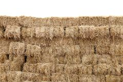 A palha, parede do cubo do bloco da palha, palha seca, feno da pilha da fileira isolou o fundo branco, palha para o estilo do vaq Fotografia de Stock
