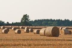 A palha rola no campo do fazendeiro fotos de stock royalty free