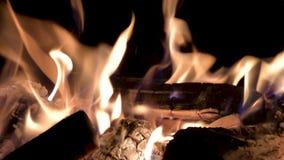 Palić płonie przy nocą Graba z płonącym drewnem tła czerni ogień zdjęcie wideo