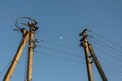 Pali ad alta tensione di cemento armato con la luna fra le colonne Fotografia Stock