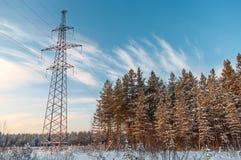 Pali ad alta tensione di potenza nell'inverno Fotografia Stock Libera da Diritti