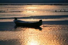 Pali al tramonto Fotografia Stock Libera da Diritti