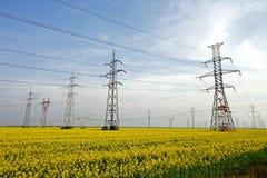Pali di elettricità Fotografia Stock