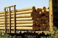 Pali di legno 1 Fotografie Stock