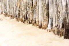 Pali di legno fotografie stock libere da diritti