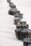 Pali di legno Fotografia Stock