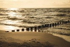 pali di legno dalle vecchie rimanenze del frangiflutti nel retro sguardo d'annata marino immagine stock libera da diritti