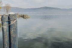 Pali di legno del bacino del lago dopo la nebbia di mattina fotografia stock