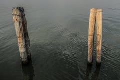 Pali di legno del bacino del lago dopo la nebbia di mattina fotografia stock libera da diritti