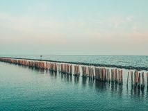 Pali di legno nel mare del turchese pali di legno dalle vecchie rimanenze del frangiflutti nella festa del fondo della natura del fotografia stock libera da diritti