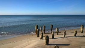 Pali di legno sulla costa di mare Fotografia Stock