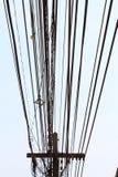 Pali di potere e molte linee telefoniche Fotografia Stock