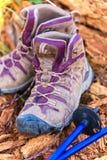 Pali di trekking e degli stivali immagini stock libere da diritti