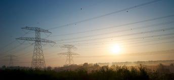 Pali elettrici nel primo mattino immagini stock