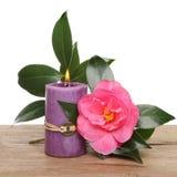 Świeczka i kameliowy kwiat Fotografia Royalty Free