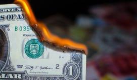 Palić jeden dolara Fotografia Stock