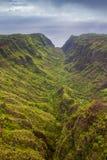 pali na kauai свободного полета Стоковое Изображение