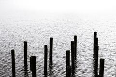 Pali nell'acqua Fotografia Stock