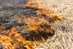 Palić resztki w rolniczej kultywaci Zdjęcia Stock