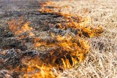 Palić resztki w rolniczej kultywaci Fotografia Royalty Free