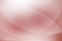 Palidezca - el fondo rosado. Imágenes de archivo libres de regalías