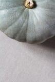 Palidezca - la calabaza verde Fotografía de archivo libre de regalías