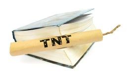 Palillo de la dinamita de TNT con el fieltro Imagen de archivo