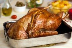 Palillo del ganso cocido al horno con las habas verdes, patatas Imagenes de archivo