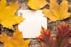 Palillo del papel en blanco con las hojas de otoño en viejo fondo de madera Fotografía de archivo libre de regalías