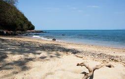 Palillo en la playa Fotografía de archivo
